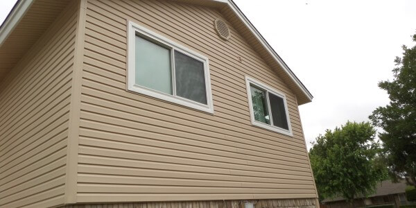 Vinyl Siding and Windows